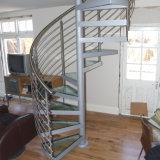 Alumínio do aço de carbono fora da escadaria espiral (PR-S06)