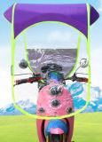 De elektrische Luifel van Sumshade van de Motorfiets