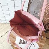 Sac d'emballage piquant mou de femmes de sac à provisions d'unité centrale (TTE-010)
