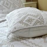 Copriletto stabilito della casa di qualità della trapunta del Comforter lavabile per personalizzato