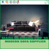 Sofá moderno de Latax de la nueva llegada para la sala de estar