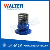 Fußventil mit Edelstahl-Ineinander greifen für Wasser-Pumpe