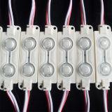 0.48W 2LEDs impermeabilizan el módulo del LED con el color caliente/natural/fresco de White/RGB para la luz/Lightbox de las muestras del LED