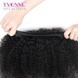 Do Weave por atacado do cabelo do Virgin de Yvonne o cabelo brasileiro empacota o cabelo Curly do Afro