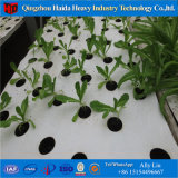 Hydroponics Growing system Greenhouse for Agriculture