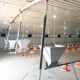 Casa moderna de la granja avícola con el marco ligero de la estructura de acero en venta