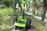 جديدة 4 عجلة كهربائيّة عربة ميزان [سكوتر]