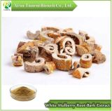 White Mulberry Root-Bark Extract, Powder 10:1
