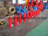 고품질 압력 안전 밸브