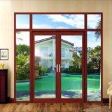Puertas de aluminio del diseño de lujo para el hogar