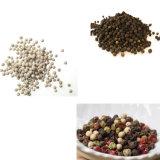 Les semences de ferme nettoyeur de vibrations