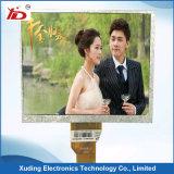 Tipo positivo transmissivo LCD da tela de indicador do Tn LCD do caráter