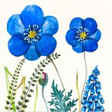 Belle fleur 100 % de la conception à la main peinture huile sur toile