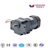 Motor eléctrico de la C.C. de Wanshsin/motor del engranaje con la caja de engranajes espigada
