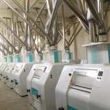 Weizen-Mehl-Fräsmaschine des europäischen Standard-50tpd