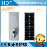 80W 8000lm LED LiFePO4 건전지를 가진 태양 정원 가로등