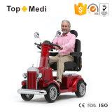 Tew206 Brits Pg Controlemechanisme 4 High-End van Wielen de Snellere Autoped van de Mobiliteit van de Verrichting van de Macht Gemakkelijke Regelbare voor Bejaarden