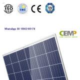 4 공통로 세포는 상업용 태양 에너지 시스템을%s 270W 태양 모듈을 디자인했다