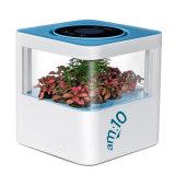 Am: 10 Smart-Forest экологических воздухоочиститель с растениями, анионов, стерилизации и crystal фильтр выходящего воздуха HEPA