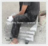 Китай Flamed/ Характер поверхность и кромки плитка для пола в саду