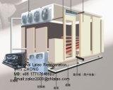 Cella frigorifera unita (conservazione frigorifera)