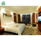 a mobília de cinco estrelas do quarto do hotel da avaliação ajusta o estilo Neoclassical e moderno