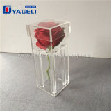 Caisse acrylique de fleur de couleur faite sur commande imperméable à l'eau