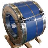 En10088-2 1.4301 1.4307 laminato a freddo lo strato dell'acciaio inossidabile in bobine (grado 304/304L)