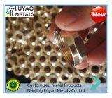 黄銅の/CNC機械化の黄銅の/CNC機械化の機械化