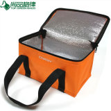 Compartimento dupla PEVA Thermal Insulated Cooler Picnic Bag (TP-CB319)