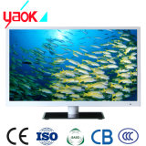 LED elegante LCD TV 55inches