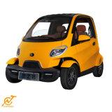 Twee de Mini Elektrische Auto van Seater 60V 4000W met Facultatieve Batterij