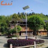 Indicatore luminoso solare esterno della strada di prezzi 30 della fabbrica dell'oro di watt poco costoso LED di watt 60