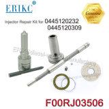 Reparatur-Installationssätze der Erikc F00rj03506 Selbstmotorüberholung-Installationssatz-F 00r J03 506 der Düsen-Dlla153p2189 für 0445120232 0445120309 Dong Feng für 0445120199