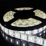 striscia di bassa tensione 5630 LED di alta luminosità DC12V/24V di 45-50lm/LED 19W/M
