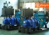 回転子の水ポンプセットが付いているディーゼル機関