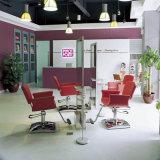Beauty Salon apparatuur PU Lederen kapstoel verstelbare kappersstoel