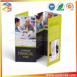 Personalizado colorido de alta qualidade de impressão de brochura Trifold barata