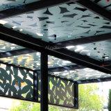 Bekleding van de Voorzijde van het Aluminium van de Fabriek van Foshan de Buiten, de Gordijngevel van het Glas