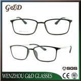 최신 새로운 디자인 Ultem 탄소 섬유 사원 8007를 가진 플라스틱 Eyewear 안경알 광학 프레임