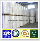 Papier enduit de C2s de moulin/d'usine avec la bonne qualité et le prix concurrentiel