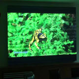A Todo Color de LED de interior Alquiler de pantalla de video/Pantalla de leds