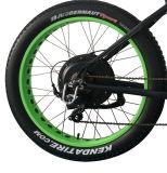 26*4.0 인치 500W 바닷가 눈 산 뚱뚱한 타이어 전기 자전거