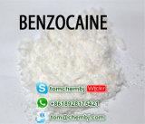 UK에 국부적으로 마취 Benzocaine 분말/100% 안전 납품
