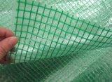 Corvers renforcé par PE, maille Tarpualin, tissu de serre chaude, bâche de protection de polyéthylène de gaze