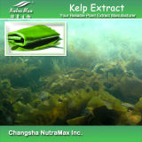 Extrait naturel de varech d'algue de 100% (10%-60% Fucoxanthin/Fucoidan)
