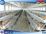 저가 조립식 닭 가금 농장 헛간 가금은 유숙한다 (FLM-F-015)