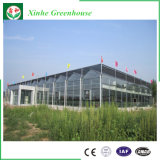 Polycarbonat-Blatt, Aluminiumrahmen-Garten-Gewächshaus