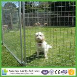Konkurrenzfähiger Preis-Qualität-Sicherlich Draht-Hundehütte