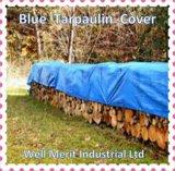 De blauwe Dekking van de Regen van het Geteerde zeildoek van het Polyethyleen